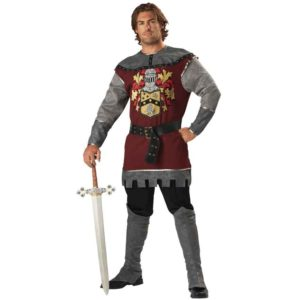 Noble Knight Men's Costume
