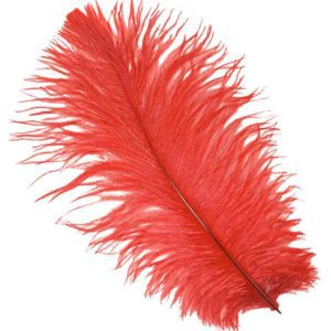 Red Ostrich Feather Plume